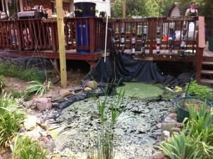 4500 gallon outdoor aquaponics