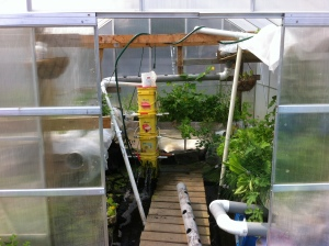 3000 gal greenhouse system