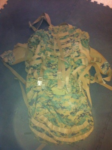 Military surplus. Very little if any wear. Can inspect before buying. $100