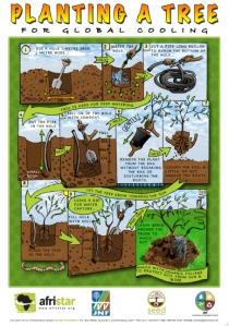 Planting-a-Tree-AF